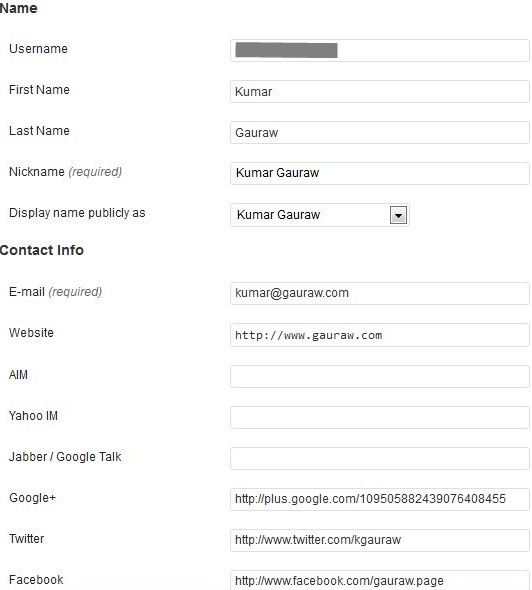 User Profile For Kumar Gauraw In WordPress Admin Area for Building Brand Identity