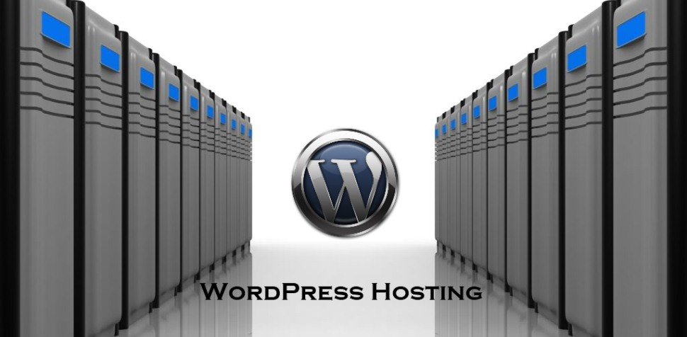 WordPress Website Hosting Choices - Best Web Hosting Companies
