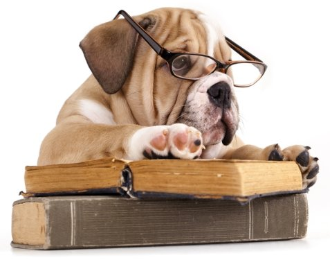 Book Reading Habit - Hard But Good Habit To Develop