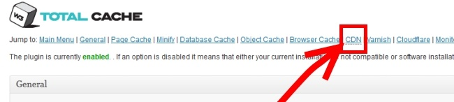 CDN Settings In W3 Total Cache Plugin